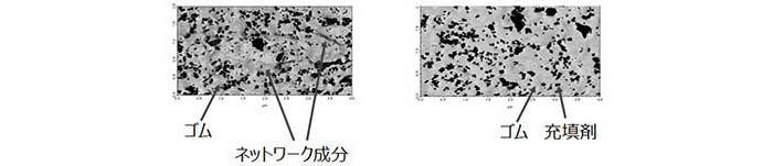 図4: 原子間力顕微鏡位相像(左:制御でネットワークあり、右:制御せずネットワークなし)