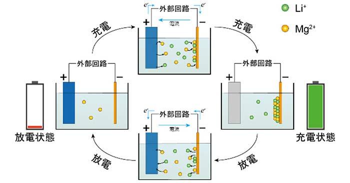 図2. Li-Mgデュアルイオン電池の模式図 充電:Li+とMg2+が正極から放出され、負極に析出する。放電:Li+とMg2+が負極から溶解し、正極に収容される。