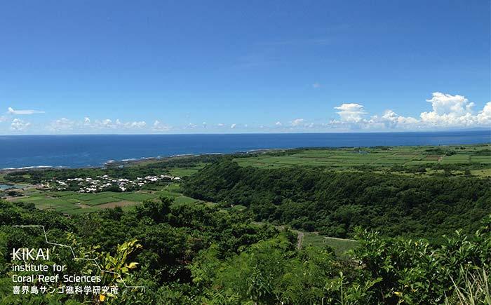 隆起サンゴ礁の島から環境保全を考える!地域協働型「喜界島エコフィールドツアー」