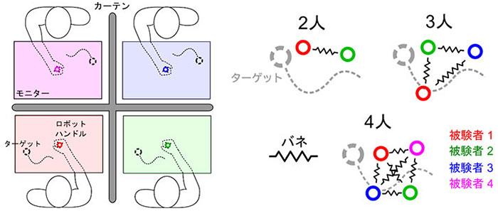 図1.ロボットインターフェースを通じて2、3、4人の集団でランダムに動くターゲットを追従させ、各被験者の追従パフォーマンスの変化を評価する。